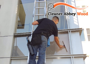 Window Cleaner Abbey Wood