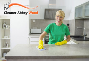 Professional Cleaners Abbey Wood