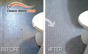 bathroom-cleaning-abbey-wood