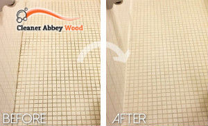 clean-bathroom-abbey-wood
