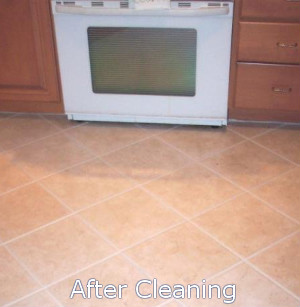 kitchen-cleaning-after-blank
