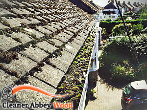 gutter-cleaning-abbey-wood